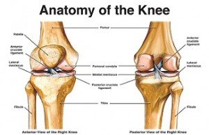 Settlement demand letter in knee injury case