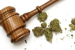 marijuana use defense argument